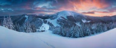 Fantastiskt afton- och morgonvinterlandskap Färgrik mulen himmel Träd för magisk snö för skönhetvärld dolt jul min version för po fotografering för bildbyråer