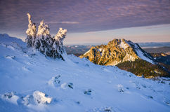 Fantastiskt aftonvinterlandskap dramatisk mulen sky Idérik collage Carpathian Ukraina, Europa Arkivfoton