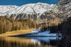 Fantastiskt berglandskap från St Moritz, Schweiz Royaltyfria Foton