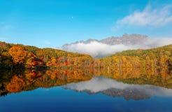 Fantastiskt höstsjölandskap av Kagami Ike Mirror Pond i morgonljus med symmetriska reflexioner av färgrik nedgånglövverk arkivbilder