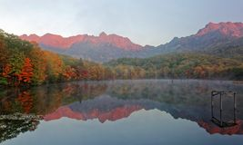 Fantastiskt höstsjölandskap av Kagami Ike Mirror Pond på en dimmig morgon med symmetriska reflexioner av färgrik nedgånglövverk arkivbilder