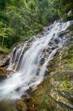 Fantastiskt landskap av den tropiska vattenfallet som flödar till och med den härliga gröna skogen Fotografering för Bildbyråer