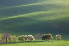 Fantastiskt landskap för Minimalism för säsongsbetonad bakgrund eller wallpape royaltyfri fotografi