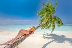 Fantastiskt landskap, gömma i handflatan med gunga över havet med kvinnan som kopplar av på, gömma i handflatan stammen, tropiskt royaltyfri bild