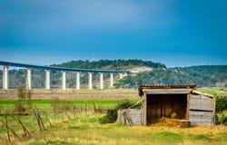 Fantastiskt landskap i Umag, Kroatien. Arkivfoto