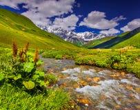 Fantastiskt landskap med en flod i bergen. Arkivbild