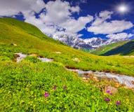 Fantastiskt landskap med en flod i bergen Arkivfoton