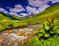 Fantastiskt landskap med en flod i bergen arkivbild