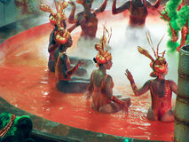 Fantastiskt påkostat stycke under den årliga karnevalet i Rio de Janeiro royaltyfri foto