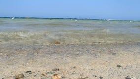 Fantastiskt Röda havet lager videofilmer