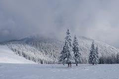 Fantastiskt vinterlandskap royaltyfria bilder