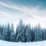 Fantastiskt vinterlandskap royaltyfri bild