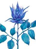 Fantastyczna błękit róża na białym tle beak dekoracyjnego latającego ilustracyjnego wizerunek swój papierowa kawałka dymówki akwa ilustracji