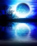 fantastyczna krajobrazowa noc ilustracji
