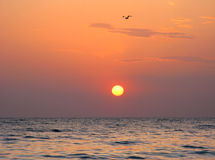 Fantastyczna pomarańczowa denna oceanu zmierzchu horyzontu nieba fotografia Zdjęcie Stock