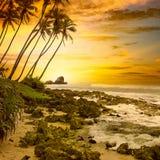 fantastyczne słońca Zdjęcie Royalty Free