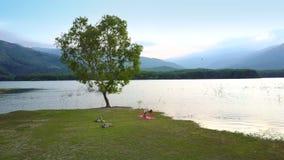Fantastycznego widok z lotu ptaka samotny drzewo przy jeziorem i dziewczyna obliczamy w pobliżu zbiory