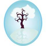 Fantastyczny błękitny drzewo na wyspie Zdjęcia Stock