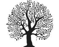 Fantastyczny drzewo na białym tle Obraz Stock