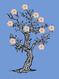 Fantastyczny drzewo z kwiatami na błękitnym tle Zdjęcia Stock