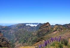Fantastyczny widok górski w maderze Fotografia Stock