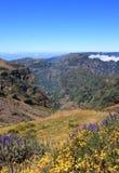 Fantastyczny widok górski w maderze Obrazy Stock