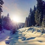 Fantastyczny zimy g?ry krajobraz chmurzy kolorowe chmury, jarzy si? w ?wietle s?onecznym alp drzewa ?nieg, zakrywaj?cy, obrazy stock