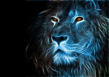 Fantasy art of a lion. Used photoshop and Intuos tablet for drawing stock illustration