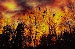 Fantasy Art. Sunset Birds Autumn Colors Stock Photo