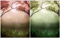 Fantasy Background. For your artistic creations and/or your projects Stock Photography