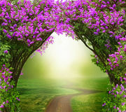 Free Fantasy Background . Magic Forest With Road Royalty Free Stock Images - 85754069