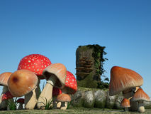 Fantasy background : mushrooms. 3D fantasy background of mushrooms Royalty Free Stock Photos