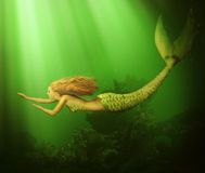 Fantasy. beautiful woman mermaid Royalty Free Stock Images