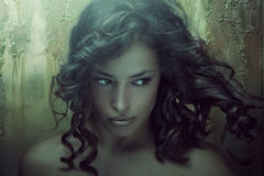 Fantasy beauty Royalty Free Stock Images