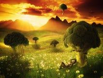 Fantasy - broccoli land Stock Photos
