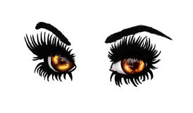 Fantasy brown eyes. Fantasy eyes of orange and brown colors with long black lashes on white background vector illustration