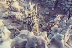 Fantasy canyon Stock Photo
