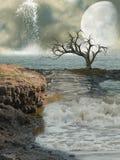 Fantasy coast Stock Image