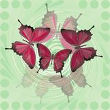 Fantasy decorative spring or summer tile with red butterfly motif. Fantasy decorative spring or summer tile with red butterfly blending motif on green swirl area stock photography
