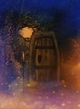 Fantasy door background Royalty Free Stock Photos
