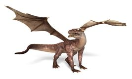 Fantasy Dragon Royalty Free Stock Images