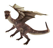 Fantasy Dragon Royalty Free Stock Photos