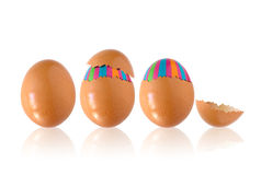 Fantasy Egg Royalty Free Stock Photos