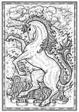 Horse symbol with four nature elements, fire, air, water and earth mystic signs in frame. Fantasy engraved illustration for t-shirt, print, card, tattoo design Royalty Free Stock Photos