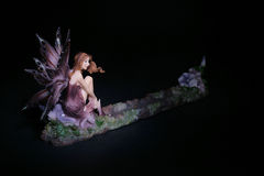 Fantasy Fairy Figurine Stock Photography