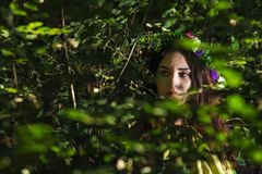 Fantasy Fairy Tale Forest Stock Images