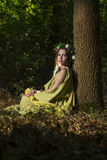 Fantasy Fairy Tale Forest Stock Photography