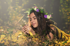 Fantasy Fairy Tale Forest Royalty Free Stock Photography