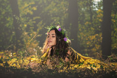 Fantasy Fairy Tale Forest Royalty Free Stock Image