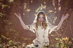 Beauty in the forest. Fantasy Fairy Tale Forest , young woman posing as nymph Royalty Free Stock Photography